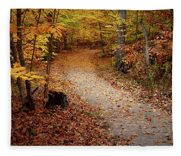 Canopy Of Color Fleece Blanket