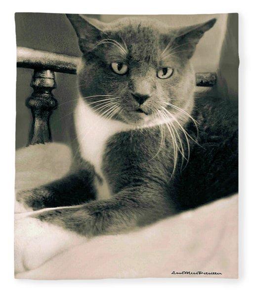 Cat Boticas Portrait  7 Fleece Blanket