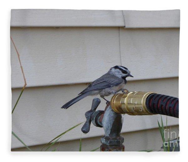 Chickadee On A Spigot Fleece Blanket
