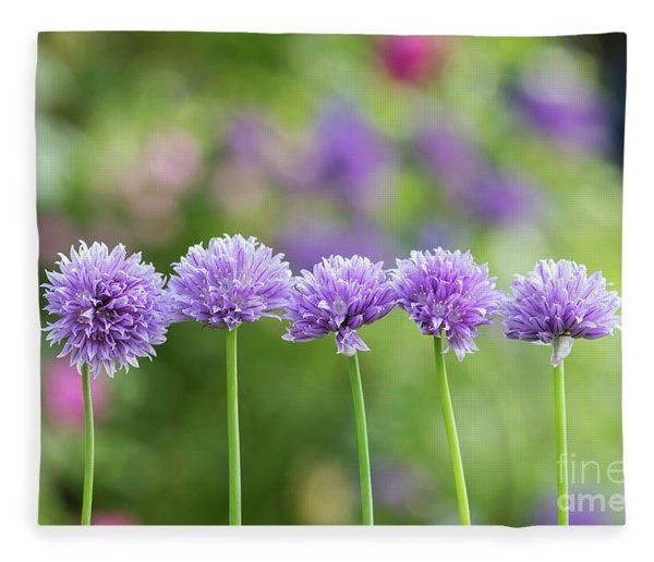 Chive Flowers Fleece Blanket