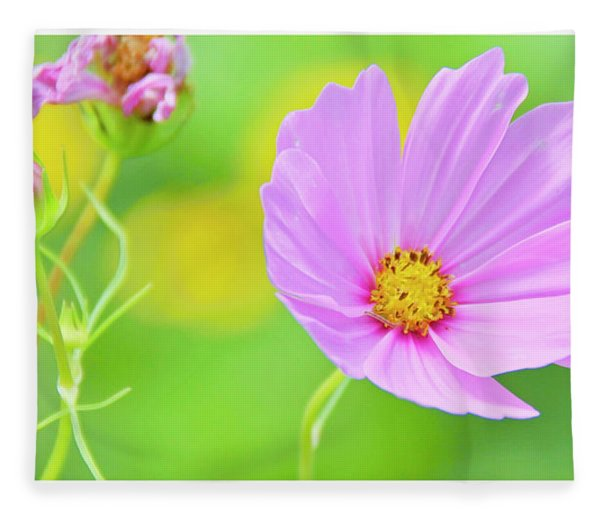 Cosmos Flower In Full Bloom, Bud Fleece Blanket