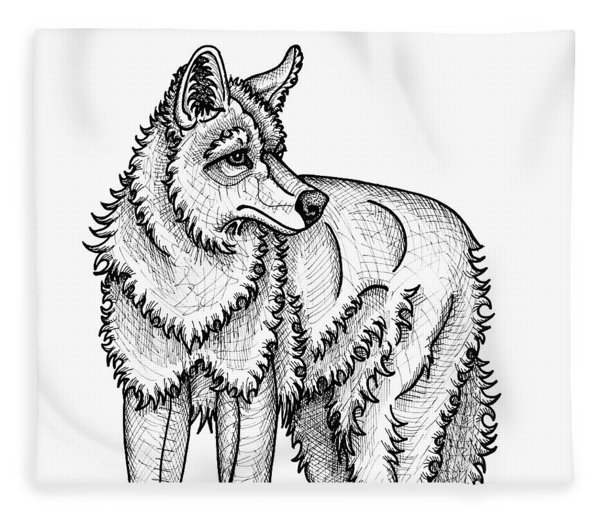 Fleece Blanket featuring the drawing Coyote by Amy E Fraser