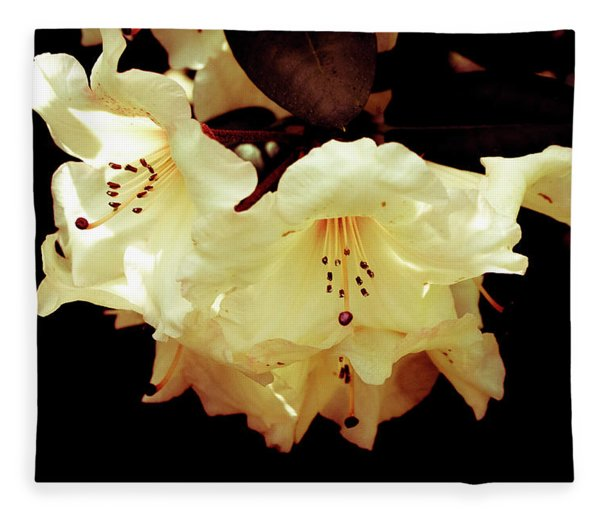 Creamy Rhododendron Fleece Blanket