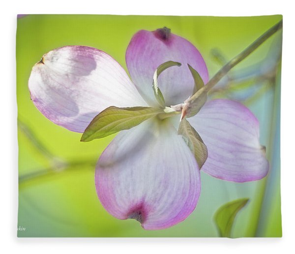 Dogwood Blossom In Spring Fleece Blanket