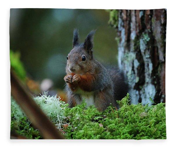 Eating Squirrel Fleece Blanket