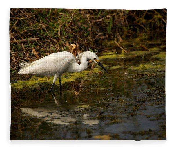 Egret Hunts Fleece Blanket