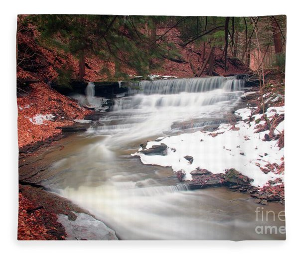 Emery Park South Wales Ny Fleece Blanket