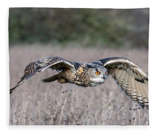 Eurasian Eagle Owl In Flight Fleece Blanket