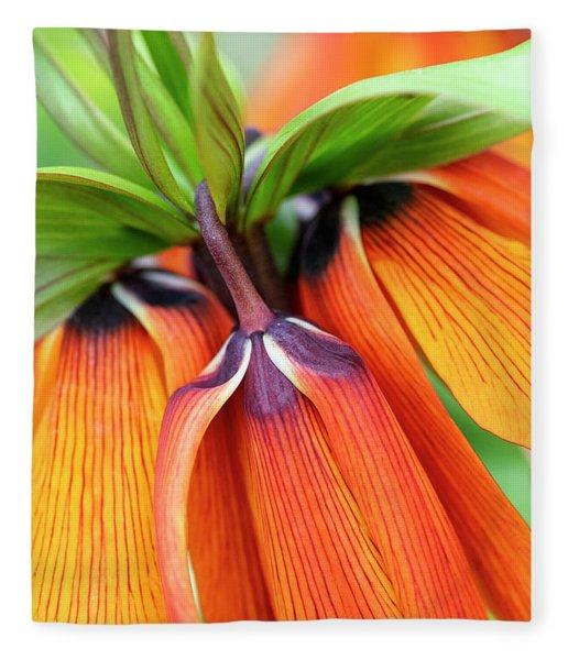Fritillaria Imperialis Crown Imperial Flowers Fleece Blanket