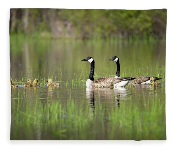 Goose Family #5 Fleece Blanket