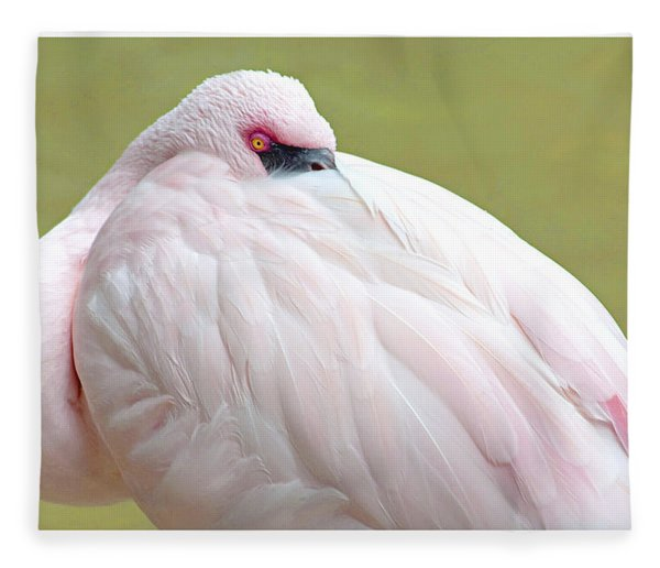 Greater Flamingo Fleece Blanket