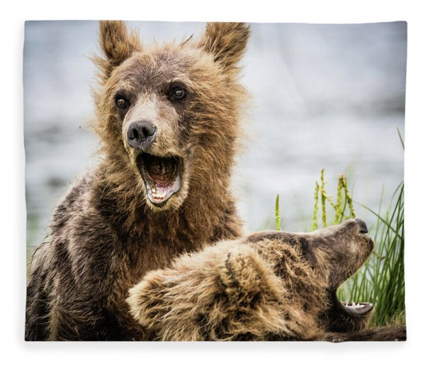 Grizzly Cubs Looking For Their Mum Fleece Blanket