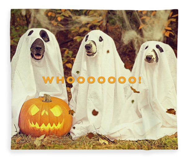 Fleece Blanket featuring the photograph Halloween Hounds by ISAW Company