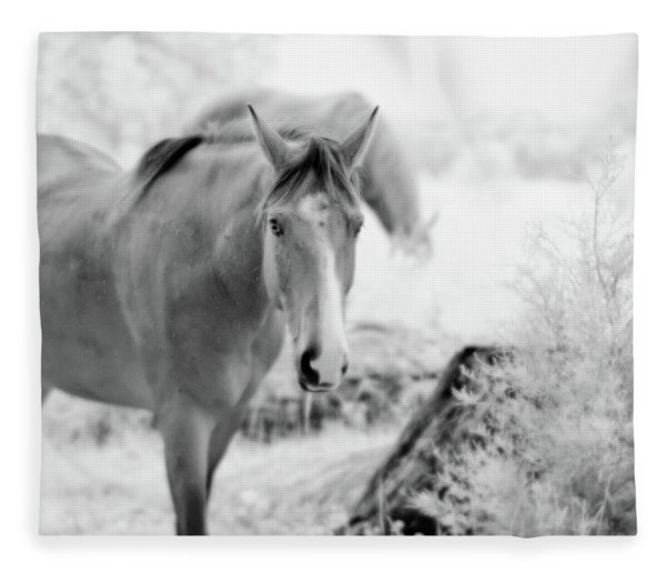 Horse In Infrared Fleece Blanket