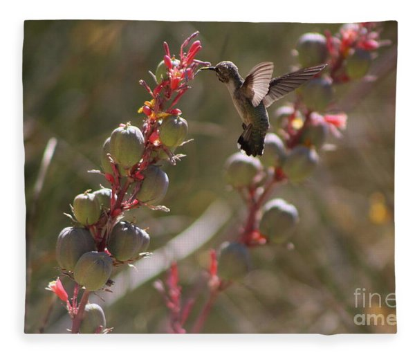 Hummingbird Flying To Red Yucca 3 In 3 Fleece Blanket