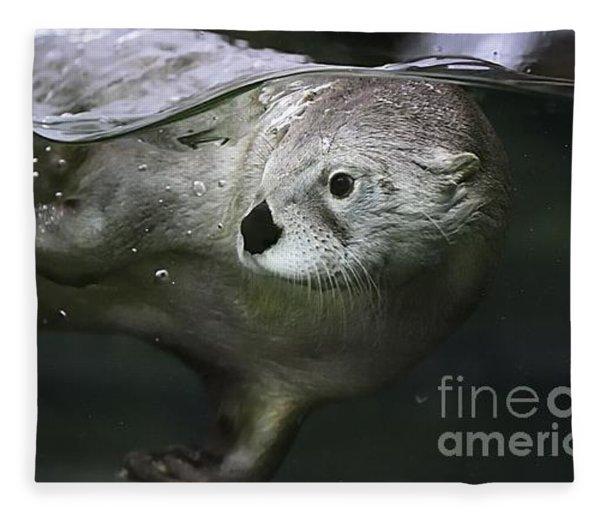I Otter Be Swimming Fleece Blanket