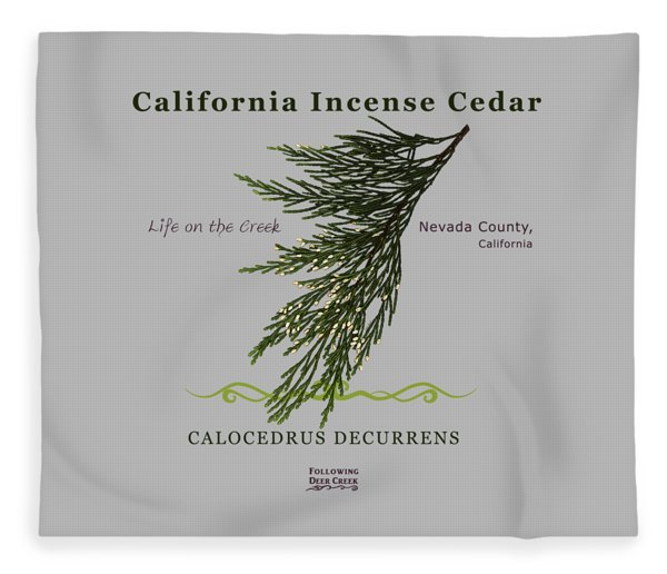 Incense Cedar - Brpwn Text Fleece Blanket