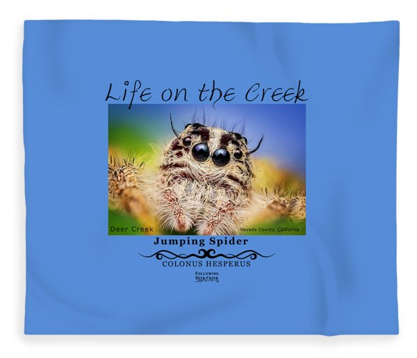 Jumping Spider Colonus Hesperus Fleece Blanket