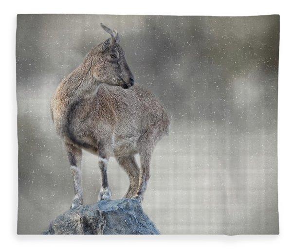 Little Rock Climber Fleece Blanket