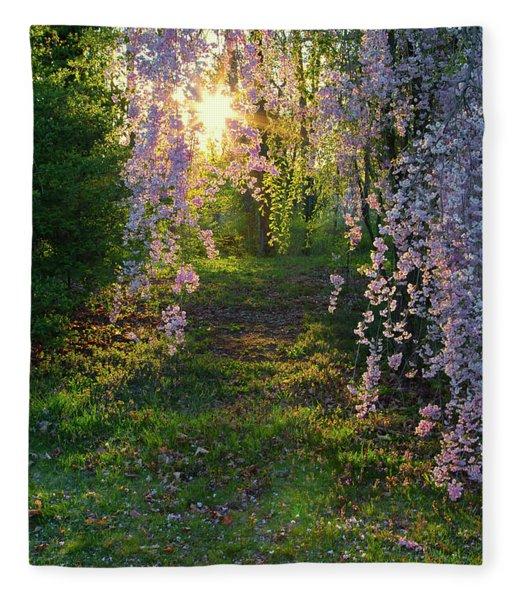 Magnolia Tree Sunset Fleece Blanket
