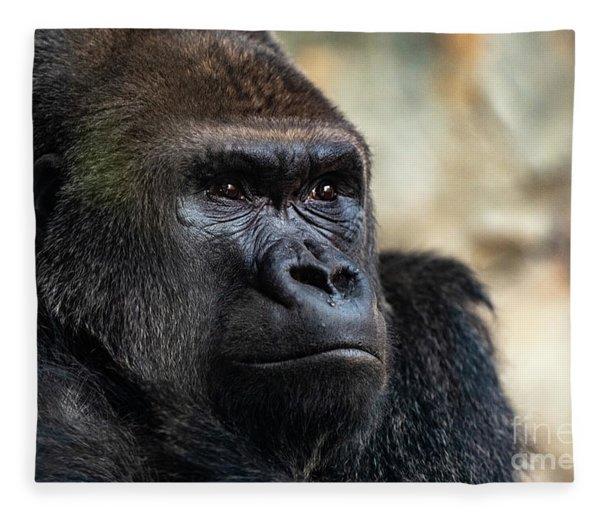 Male Western Gorilla Looking Around, Gorilla Gorilla Gorilla Fleece Blanket