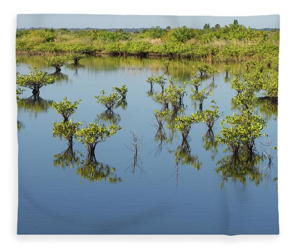 Mangrove Nursery Fleece Blanket
