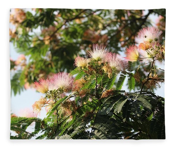 Mimosa Tree Flowers Fleece Blanket