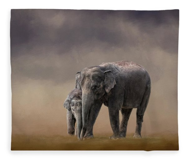 Mother And Son Fleece Blanket