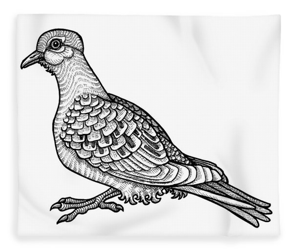 Fleece Blanket featuring the drawing Mourning Dove by Amy E Fraser