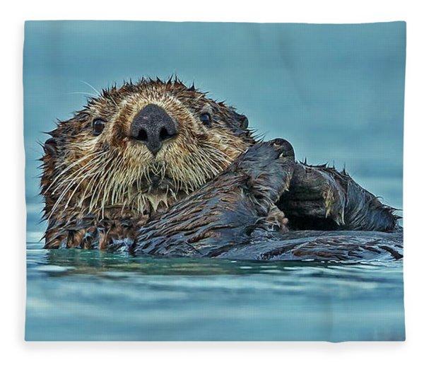 Northern Sea Otter In Alaska Fleece Blanket