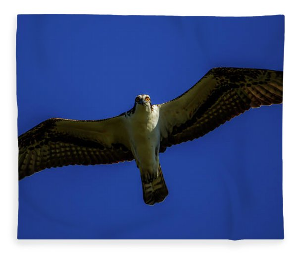 Osprey Glide In Blue Fleece Blanket