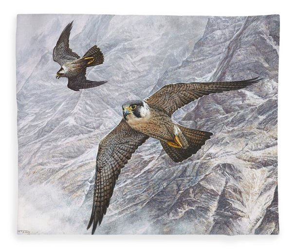 Fleece Blanket featuring the painting Pair Of Peregrine Falcons In Flight by Alan M Hunt