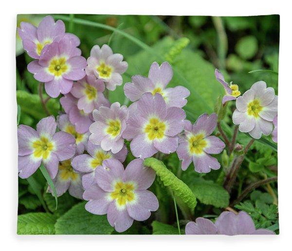 Pink Primroses In Devon Fleece Blanket