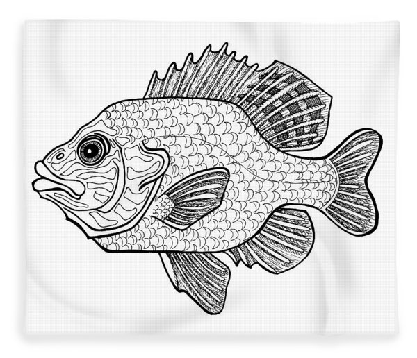 Fleece Blanket featuring the drawing Pumpkinseed Fish by Amy E Fraser