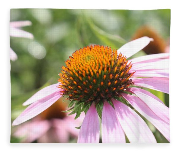 Purple Coneflower Bloom And Petals Fleece Blanket