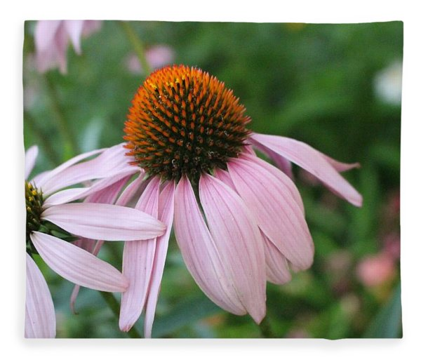 Purple Coneflower Pair Fleece Blanket