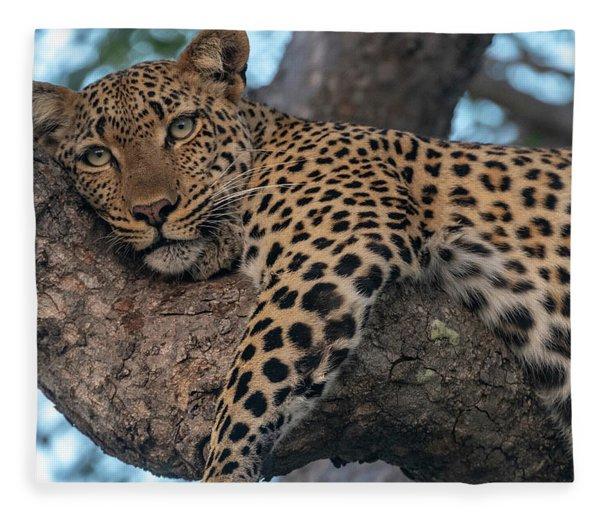 Relaxed Leopard Fleece Blanket