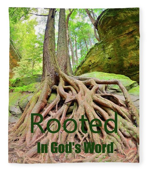 Rooted In God's Word Fleece Blanket
