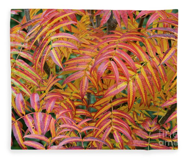 Rowan Olympic Flame Foliage Fleece Blanket