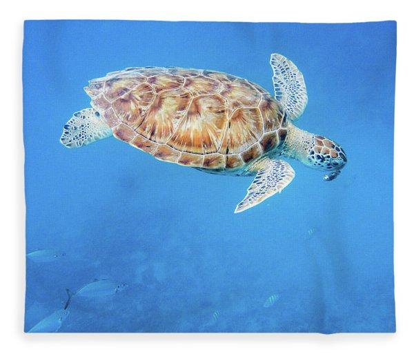 Sea Turtle And Fish Swimming Fleece Blanket
