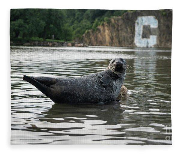 Sealy  Fleece Blanket