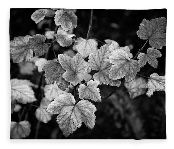 Slipping Into Fall Fleece Blanket