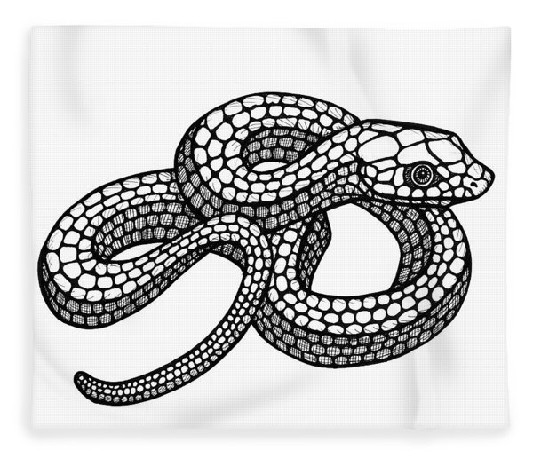 Fleece Blanket featuring the drawing Smooth Green Snake by Amy E Fraser
