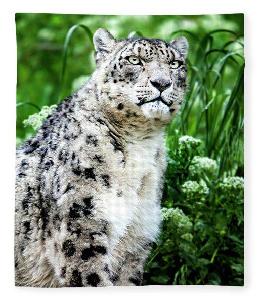 Snow Leopard, Leopard Art, Animal Decor, Nursery Decor, Game Room Decor,  Fleece Blanket