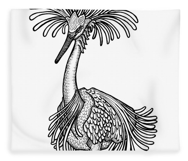 Fleece Blanket featuring the drawing Snowy Egret by Amy E Fraser