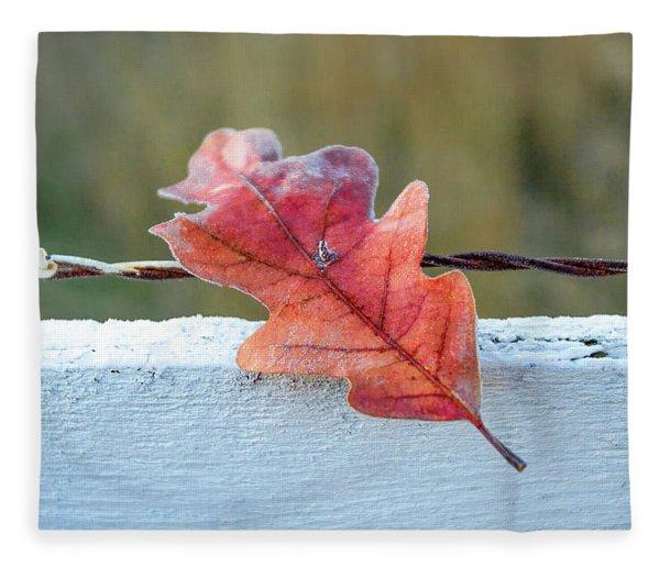Stuck Leaf Fleece Blanket