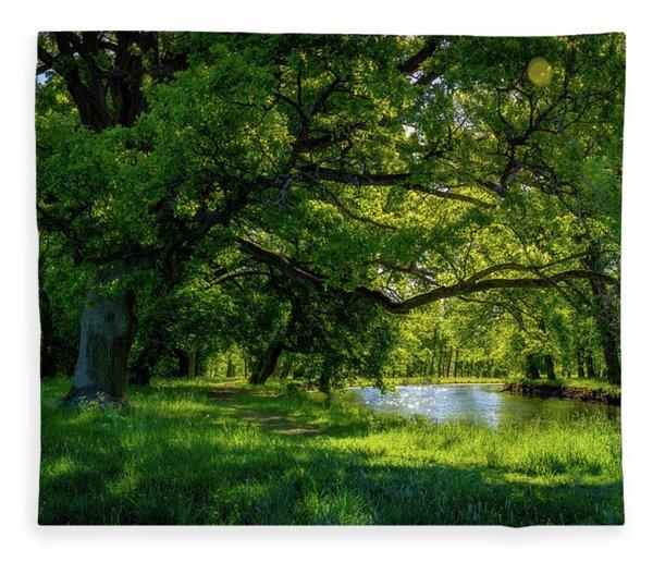 Summer Morning In The Park Fleece Blanket