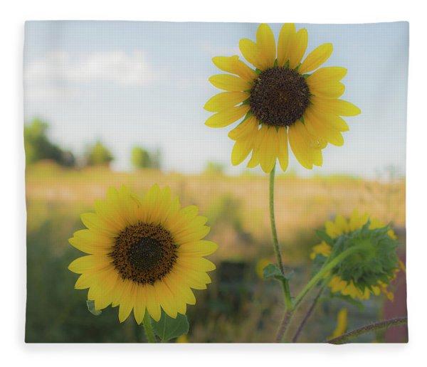Summer Softness Fleece Blanket