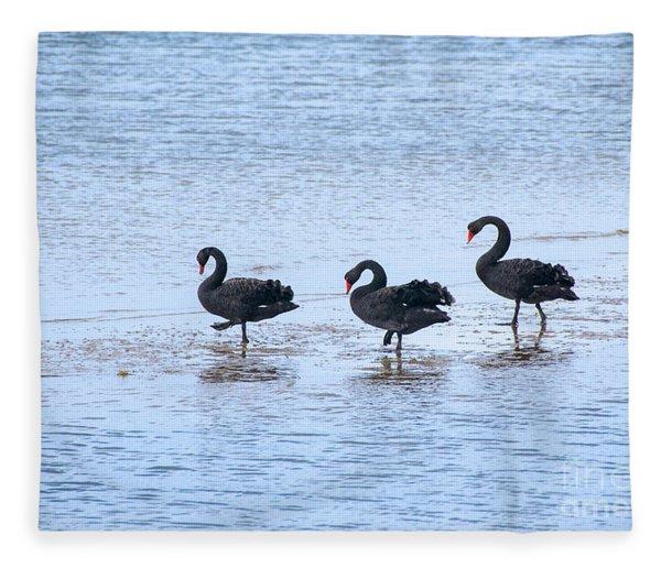 Swans On Parade Fleece Blanket