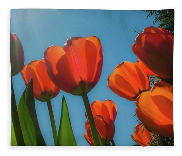 Towering Tulips Fleece Blanket